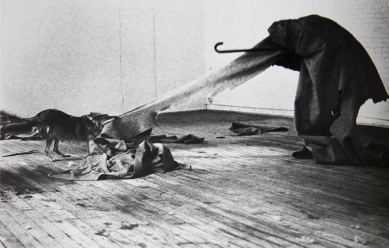 Joseph Beuys - I Like America e America Likes Me