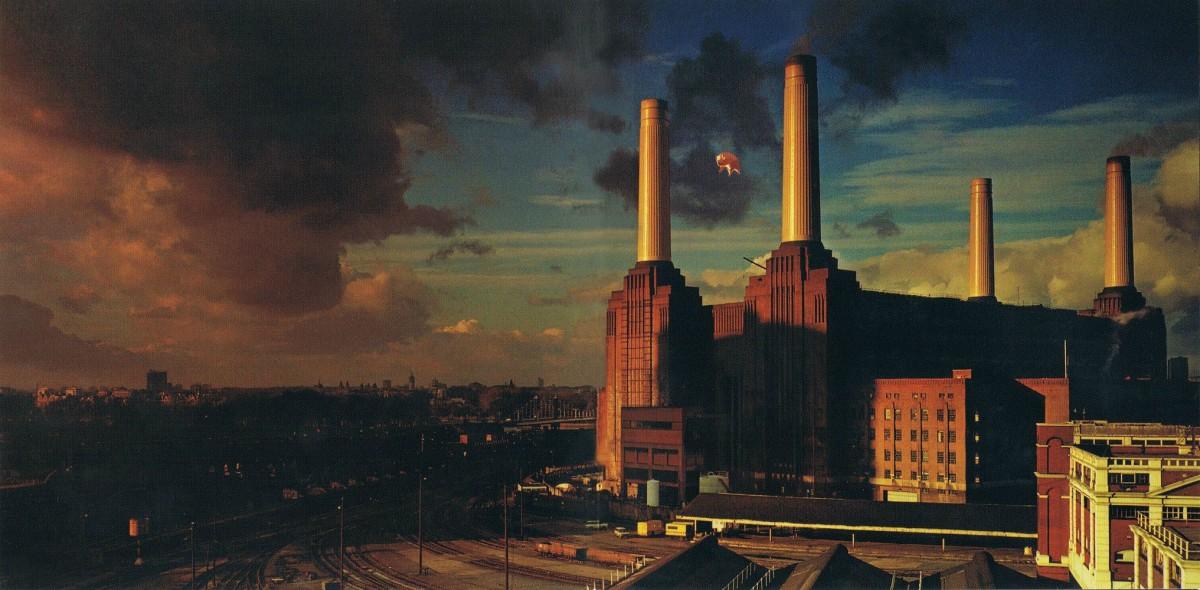 Maiali, cani e pecore. Animals e la società secondo i Pink Floyd